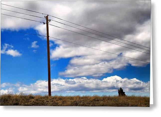 Cattle Chaser Greeting Card