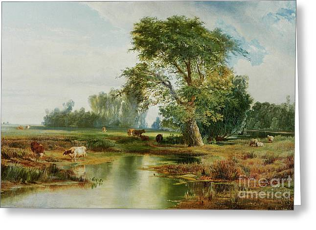 Field. Cloud Paintings Greeting Cards - Cattle Watering Greeting Card by Thomas Moran