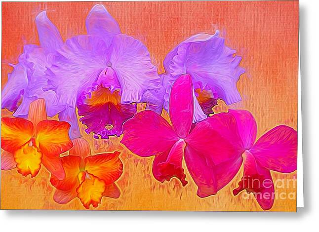 Cattleya Orchids Greeting Card