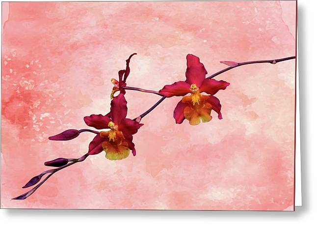 Cattleya Spray On Grunge Greeting Card
