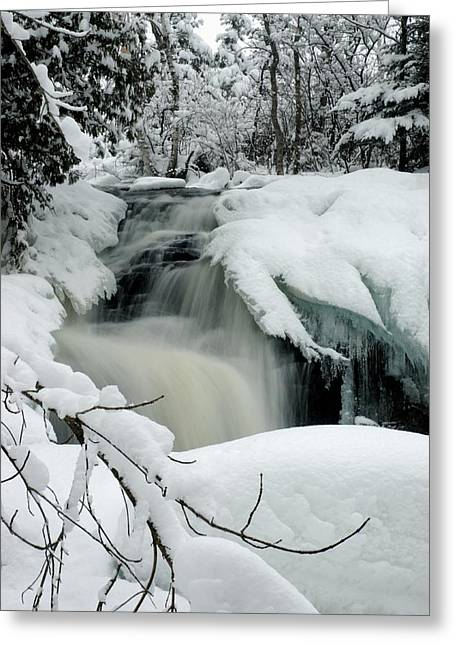 Cattyman Falls In Winter - Vertical Greeting Card by Larry Ricker