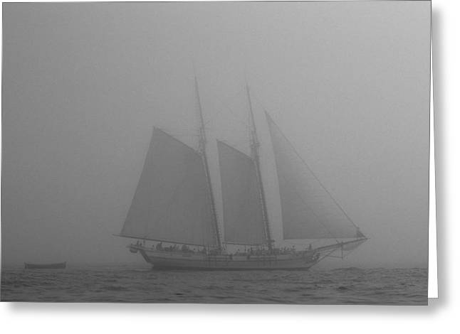 Caught In A Fog Greeting Card
