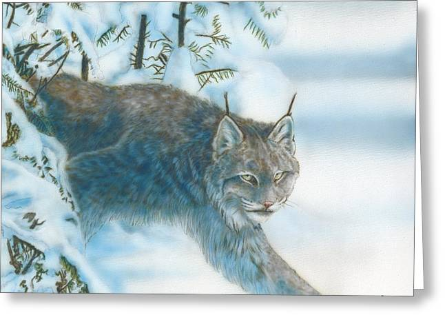 Caught In The Open Greeting Card by Wayne Pruse