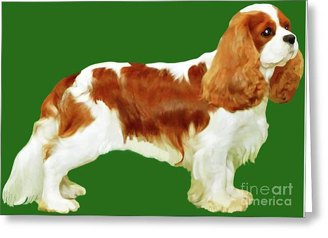 Cavalier King Charles Spaniel Greeting Card by Marian Cates