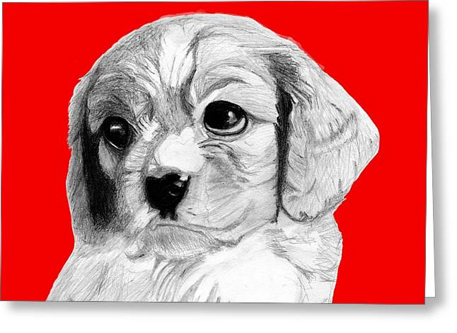 Cavalier King Charles Spaniel Puppy In Red Greeting Card