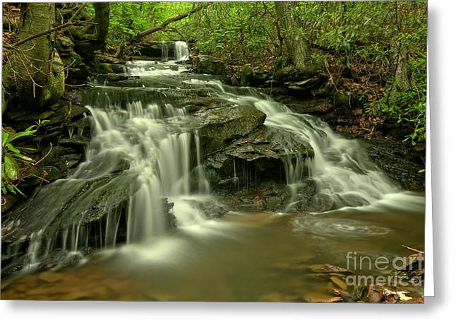 Cave Falls At Cole Run Greeting Card