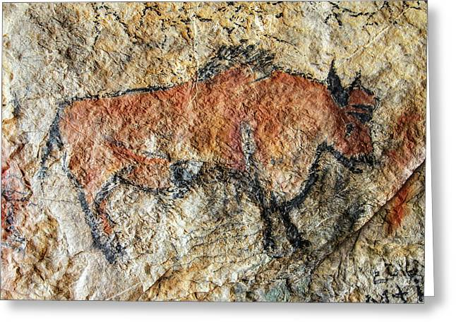 Cave Painting In Prehistoric Style Greeting Card by Michal Boubin