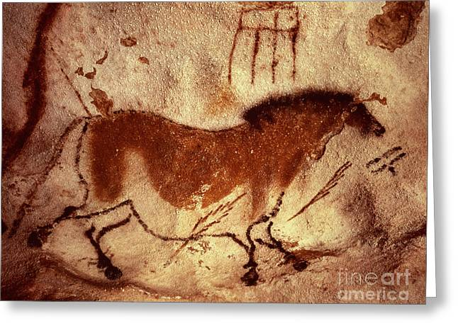 Cave Painting Of A Horse Greeting Card by Unknown