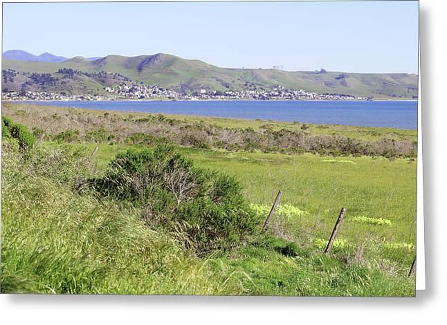 Cayucos Coastline - California Greeting Card