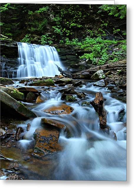 Cayuga Falls Greeting Card by Brad Hoyt
