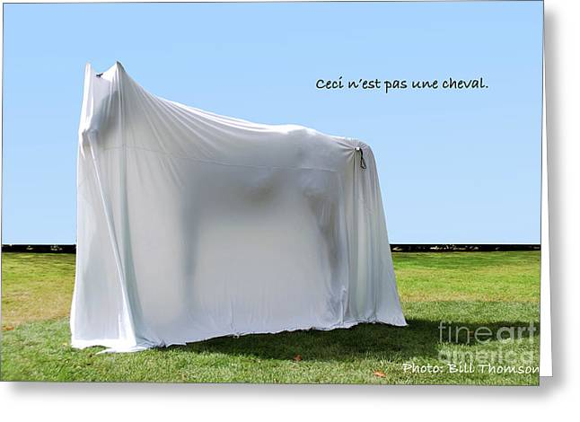 Greeting Card featuring the photograph Ceci N'est Pas Une Cheval by Bill Thomson