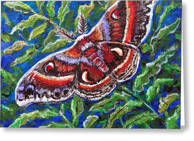 Cecropia Moth Greeting Card by Gail Butler