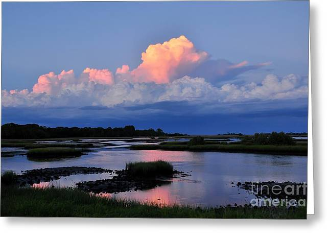 Cedar Key Sunset Greeting Card by Debbie Green