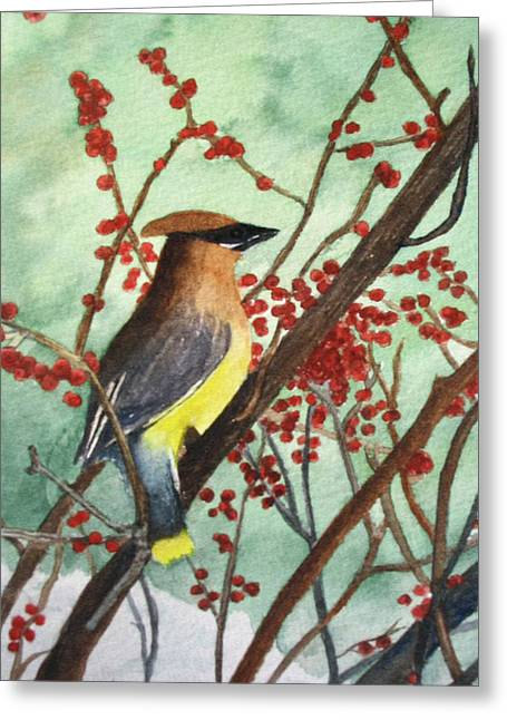 Cedar Wax Wing Greeting Card by Sharon Farber