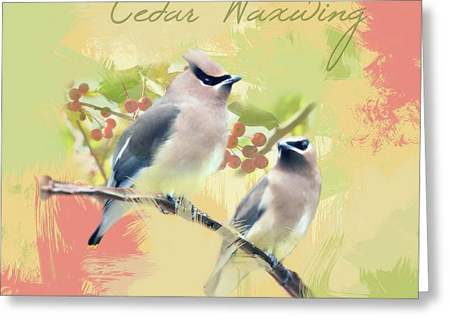 Greeting Card featuring the photograph Cedar Waxwing Watercolor Photo by Heidi Hermes