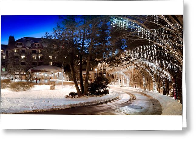 Celebrate The Winter Night Greeting Card by Karen Wiles