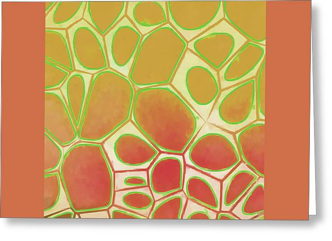 Cells Abstract Five Greeting Card by Edward Fielding