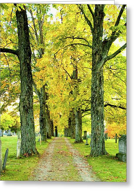 Cemetery Lane Greeting Card by Greg Fortier