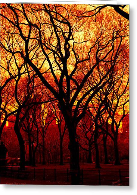 Cental Park In Red Greeting Card by Diane C Nicholson