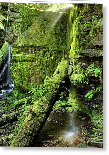 Centennial Falls Mist Greeting Card by Leland D Howard