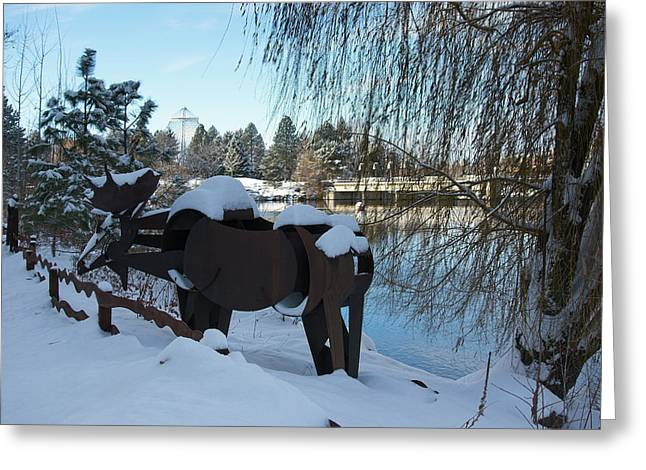 Centennial Trail Moose Greeting Card by Daniel Hagerman