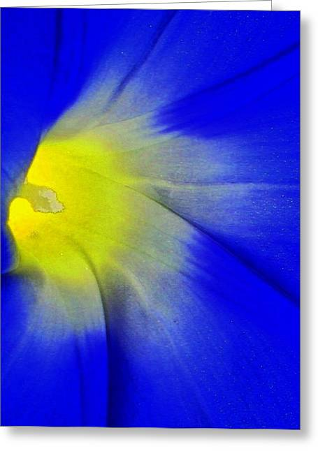 Center Of Being Greeting Card by Lenore Senior