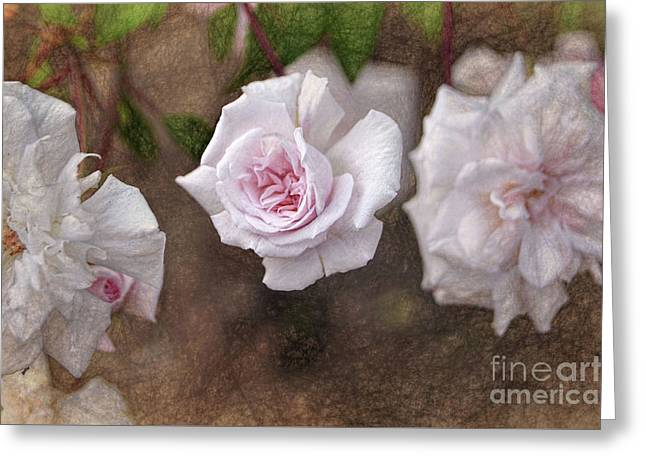 Center Of Hope Greeting Card by Gina Savage