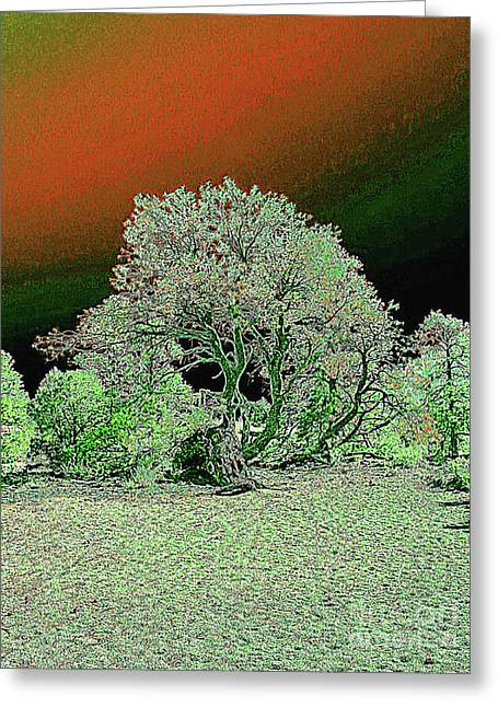 Greeting Card featuring the digital art Center Tree With Character And Neighbors by Merton Allen