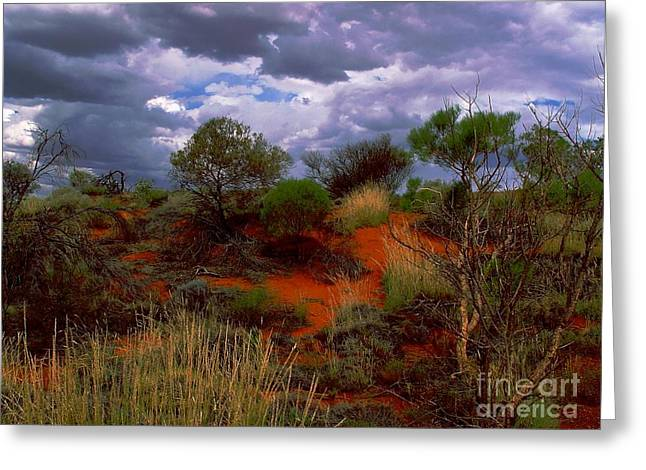 Greeting Card featuring the photograph Central Australia I by Louise Fahy