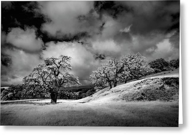 Central California Ranch Greeting Card by Sean Foster