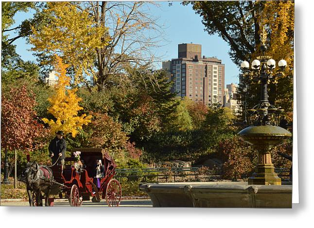 Central Park Carriage Ride Greeting Card by Trish Tritz