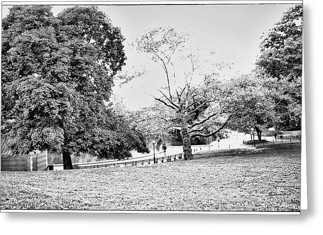 Greeting Card featuring the photograph Central Park In Black And White by Madeline Ellis