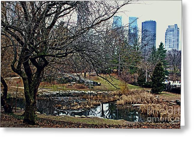 Central Park In January Greeting Card by Sandy Moulder
