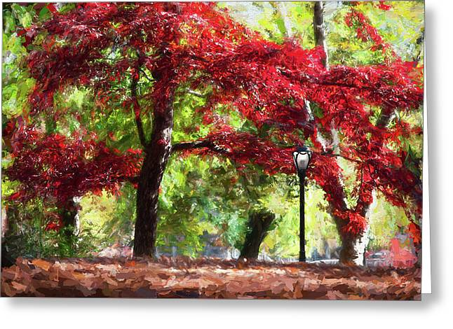 Central Park In Manhattan Greeting Card