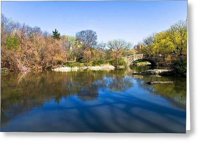 Central Park In New York City Greeting Card by Svetlana Sewell