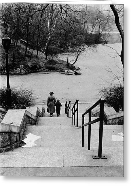 Central Park In Winter Greeting Card by Nat Herz