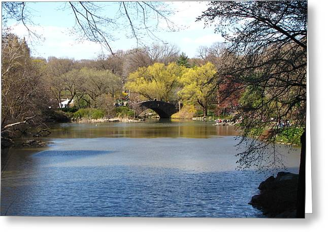 Central Park Lake Greeting Card by Peter Aiello