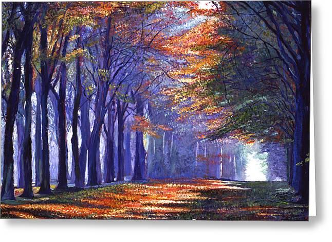 Central Park Light Greeting Card by David Lloyd Glover