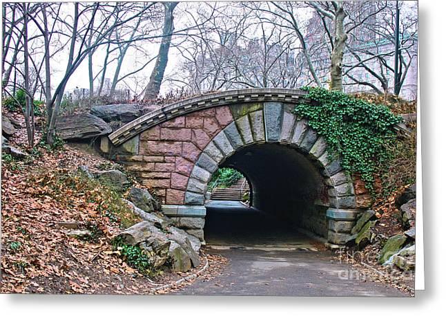 Central Park, Nyc Bridge Landscape Greeting Card