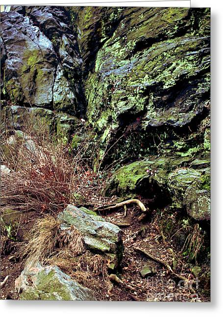Greeting Card featuring the photograph Central Park Rock Formation by Sandy Moulder