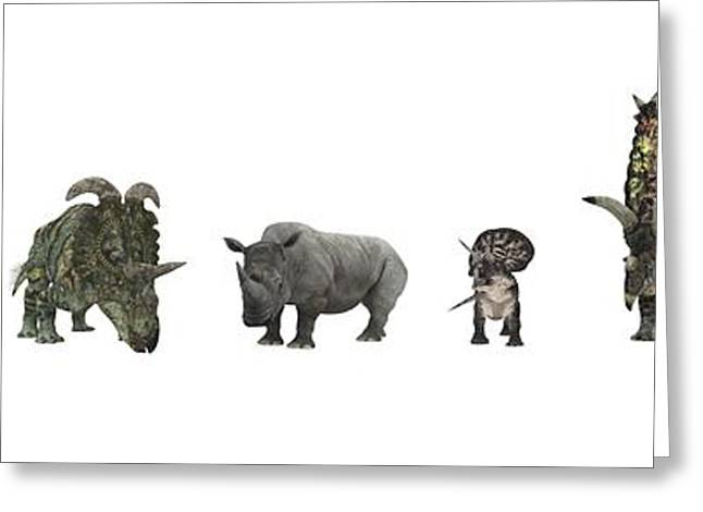 Rhinoceros Greeting Cards - Cerapod Dinosaurs Compared To A Rhino Greeting Card by Walter Myers