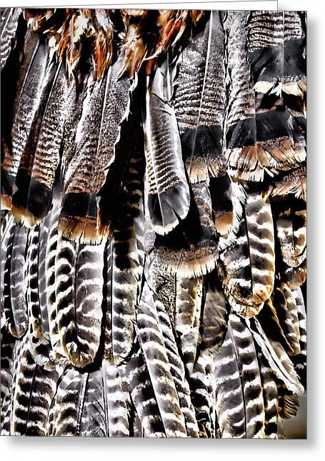 Ceremonial Feathers Greeting Card by Ann Powell