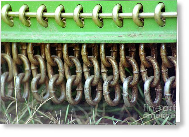 Chain Guard Greeting Card by Linda Drown