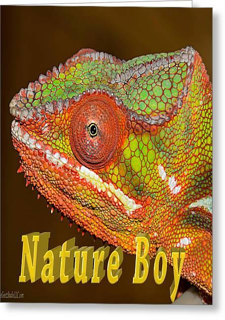 Chameleon Nature Boy Greeting Card by LeeAnn McLaneGoetz McLaneGoetzStudioLLCcom