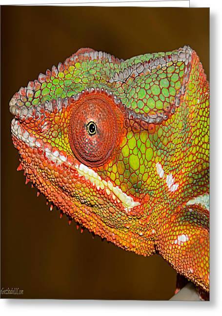 Chameleon Nature Wear Greeting Card by LeeAnn McLaneGoetz McLaneGoetzStudioLLCcom
