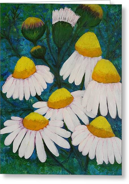 Chamomile Flowers In My Puglia Garden Greeting Card by Jean Fassina