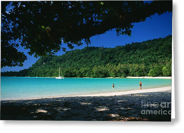 Champagne Beach Greeting Card by Peter Stone - Printscapes
