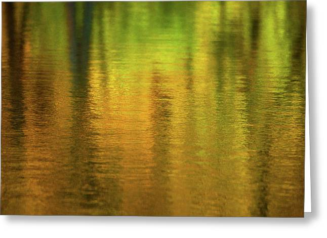 Changing Seasons Reflecting Greeting Card by Karol Livote