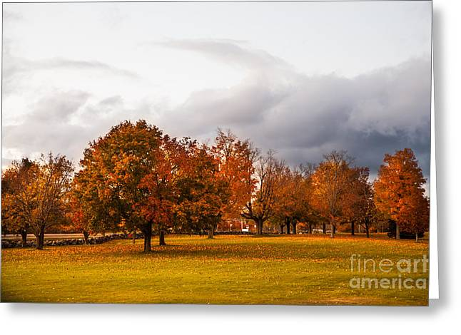 Changing  Greeting Card by Sue OConnor