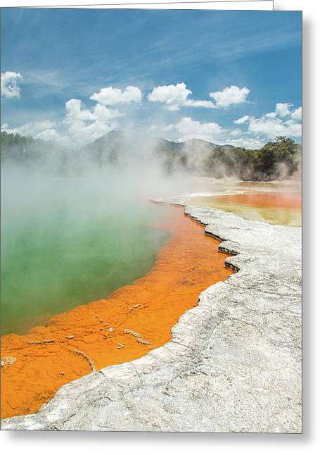 Champagne Pool Greeting Card